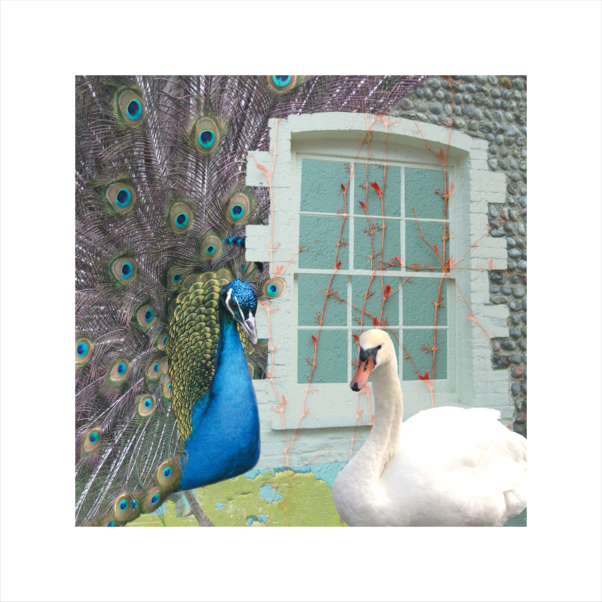 Claire Gill, Artsit, Wallscape 8 Limited Edition Print, photomontage Fien art greeting card,