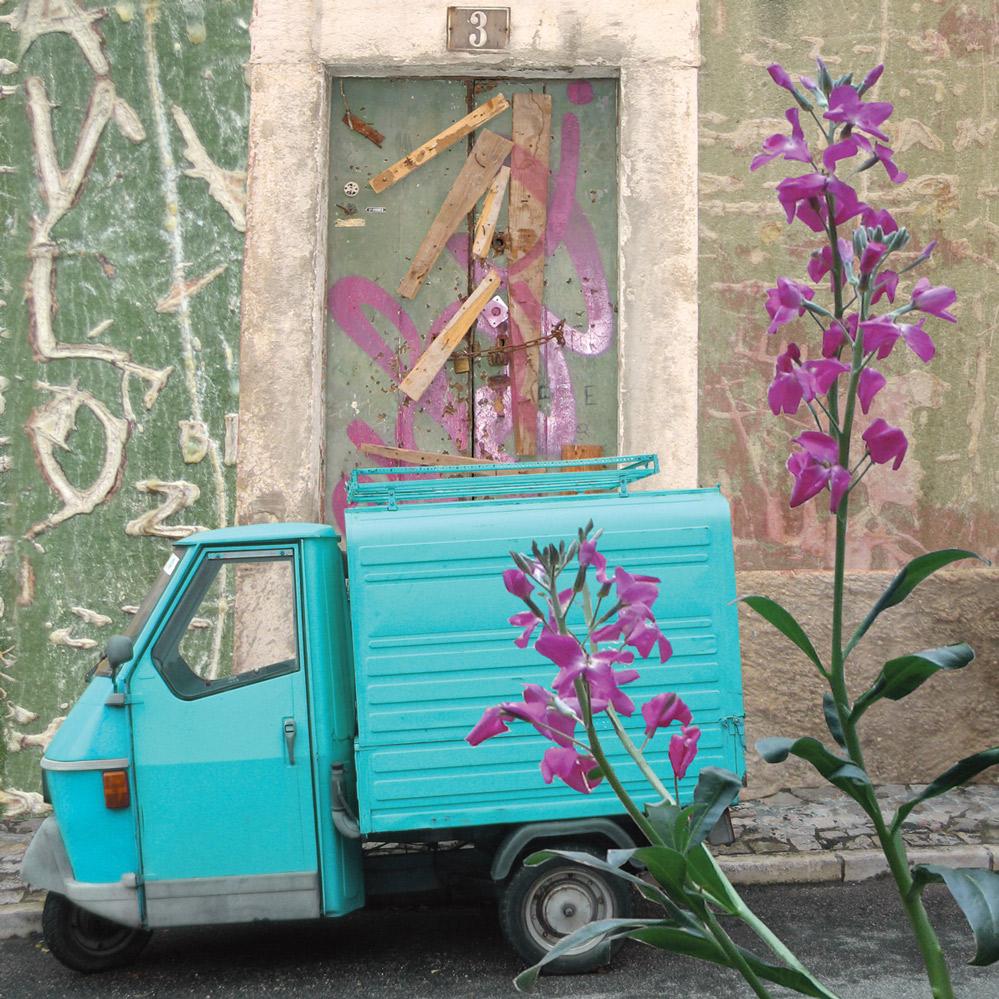 Claire Gill, Artist, Wallscape 3 Fine Art greeting card, fine art greeting card, buy art, Sintra, Portugal