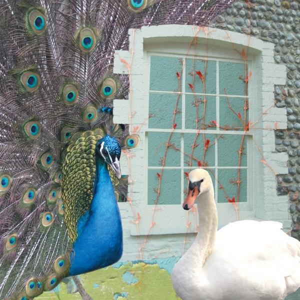 Claire Gill, Artist, Wallscape 8 Fine Art greeting card, fine art greeting card, buy art,