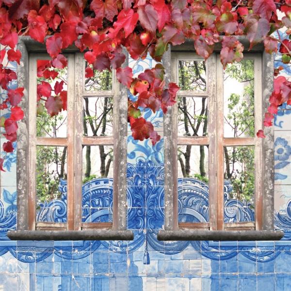 Claire Gill, Artist, Wallscape 11 Fine Art greeting Card, Fine Art greeting Card, digital photomontage, window, Sintra, Portugal, buy art,
